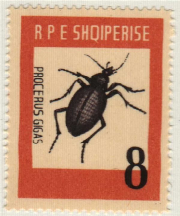 1963 Albania