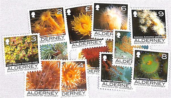 2006 Alderney