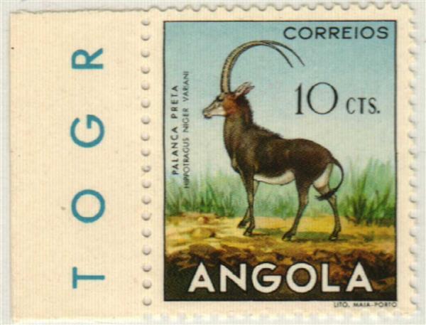 1953 Angola