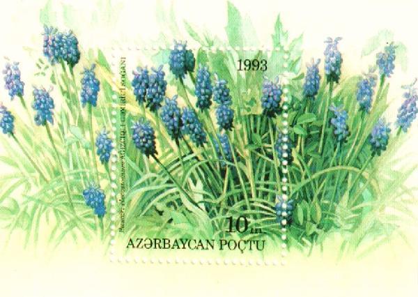 1993 Azerbaijan