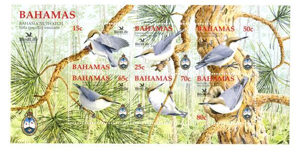 2006 Bahamas