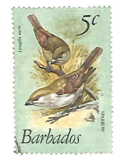 1979 Barbados