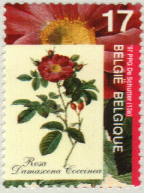 1997 Belgium