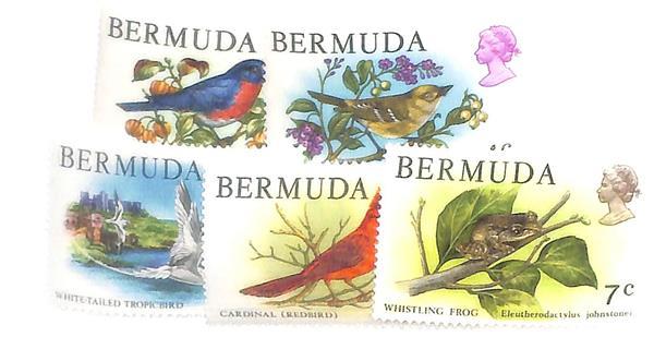 1978-79 Bermuda