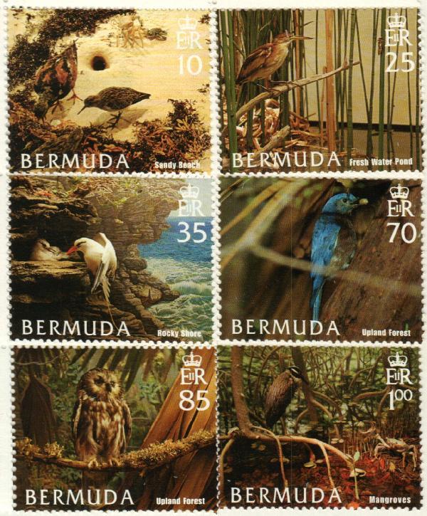 2005 Bermuda