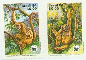 1984 Brazil