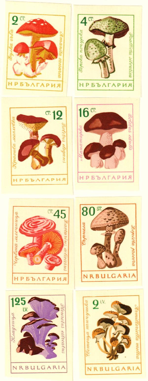 1961 Bulgaria