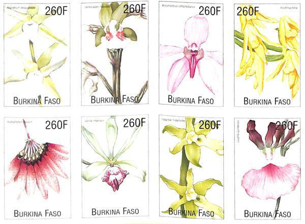 2000 Burkina Faso