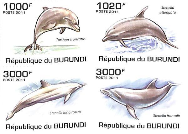 2011 Burundi
