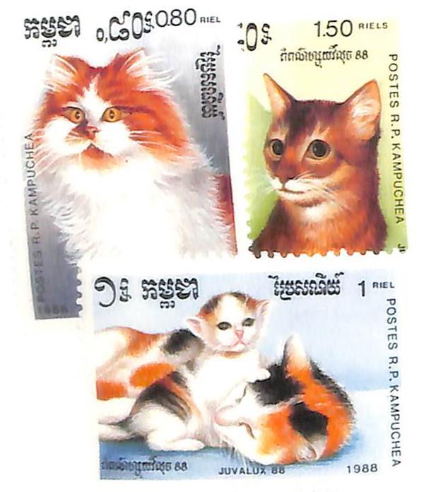 1988 Cambodia