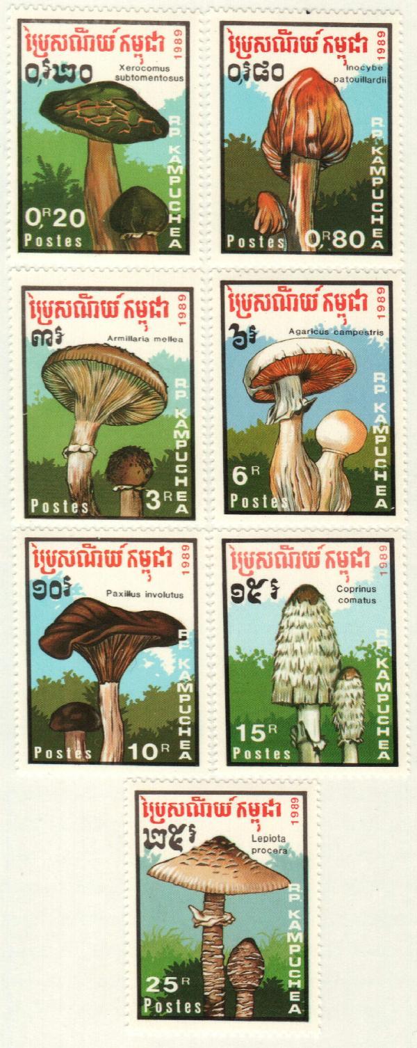 1989 Cambodia