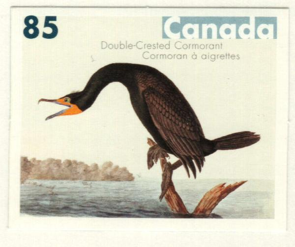 2005 Canada