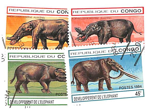 1994 Congo, Peoples Republic