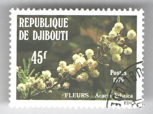 1979 Djibouti