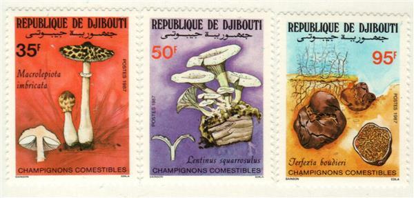 1987 Djibouti