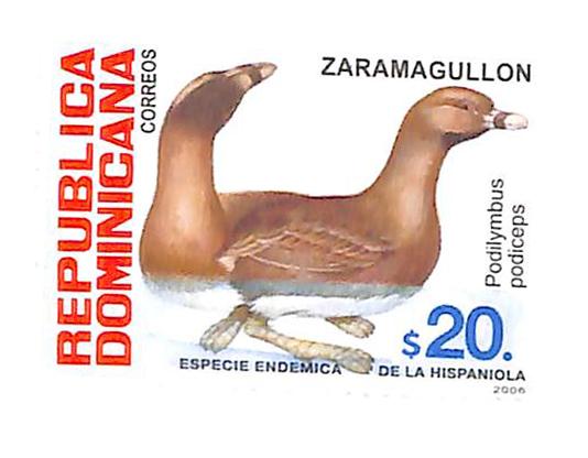 2007 Dominican Republic