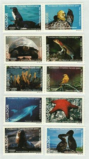 1999 Ecuador