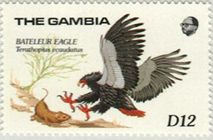 1989 Gambia