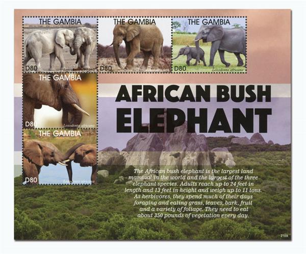 2021 D80 African Bush Elephants, Mint Sheet of 5, Gambia