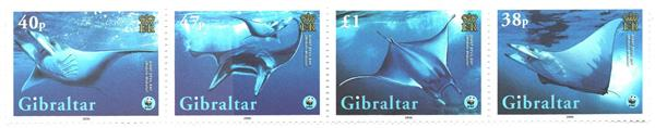2006 Gibraltar