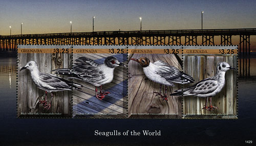 2014 $3.25 Seagulls of the World