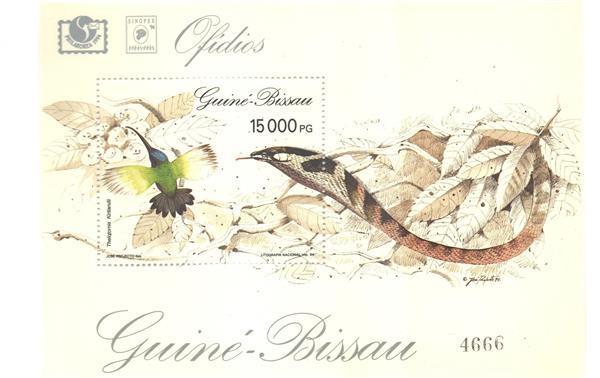 1994 Guinea-Bissau