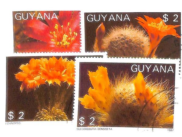 1988 Guyana