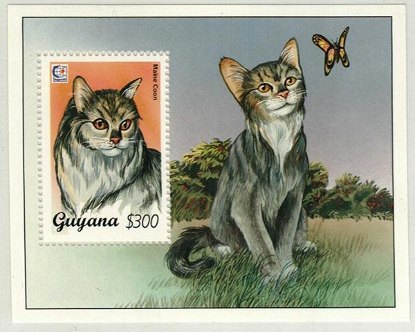 1995 Guyana