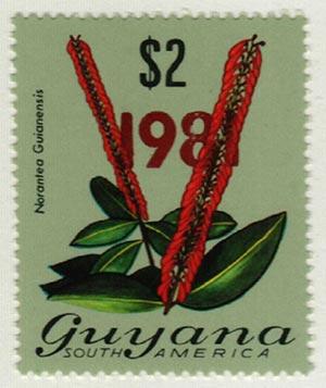 1981 Guyana