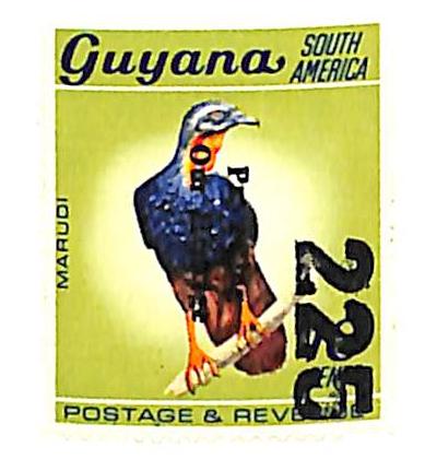1984 Guyana