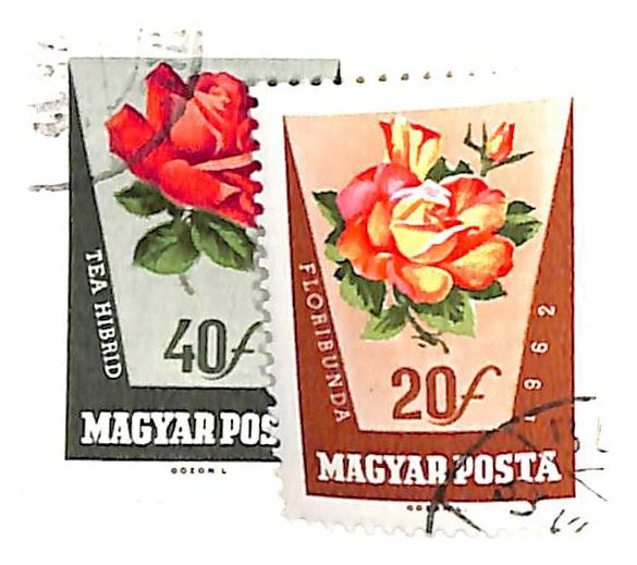 1962 Hungary