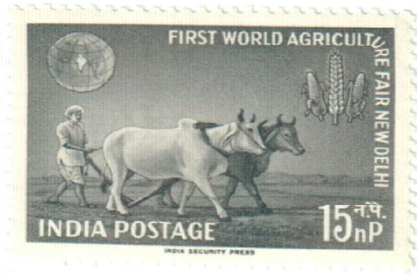 1959 India