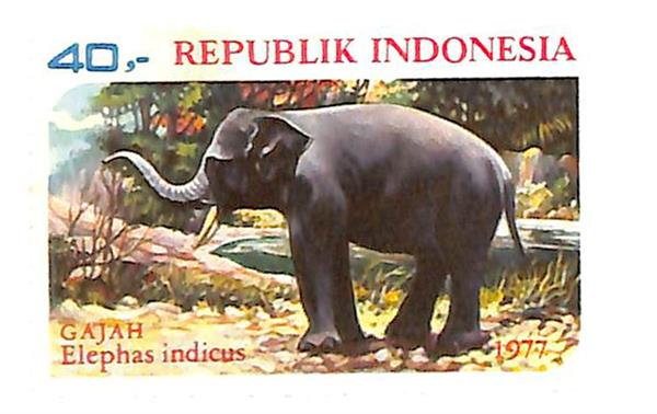 1977 Indonesia
