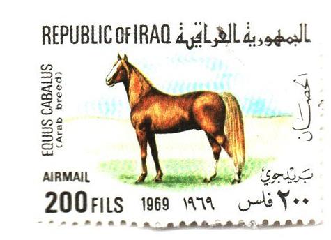 1969 Iraq