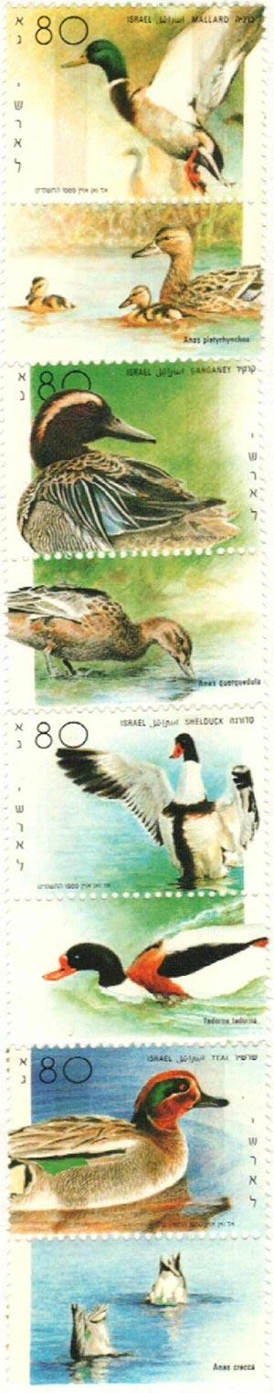 1989 Israel