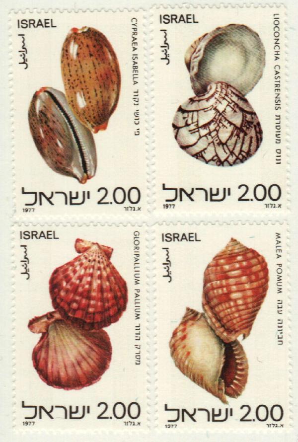 1977 Israel