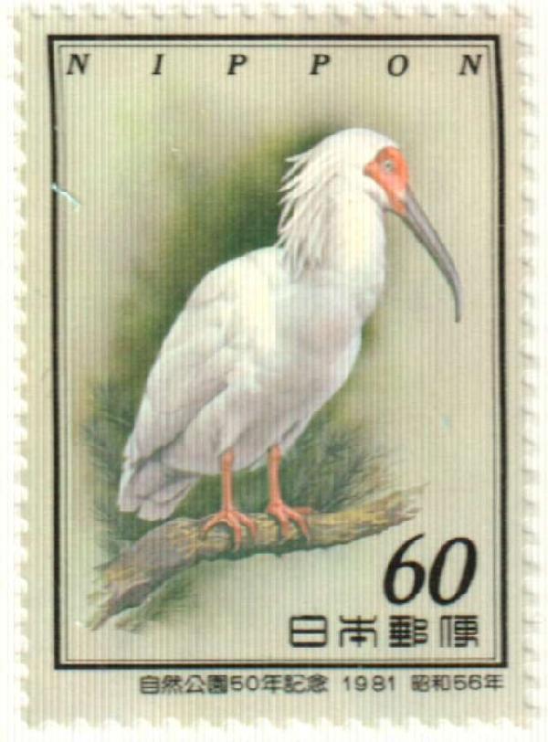 1981 Japan