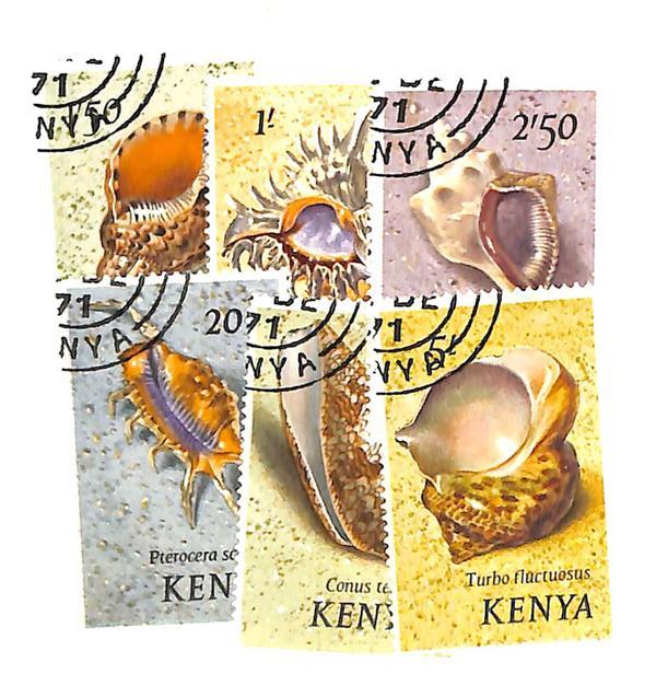 1971 Kenya