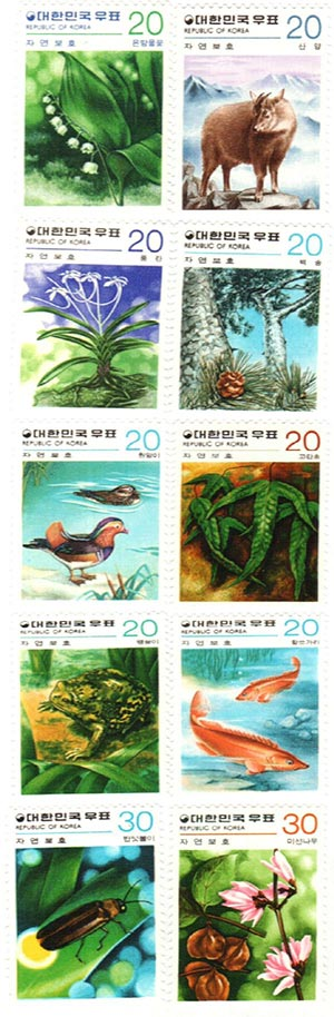 1979-80 Korea