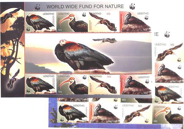 2004 Lesotho