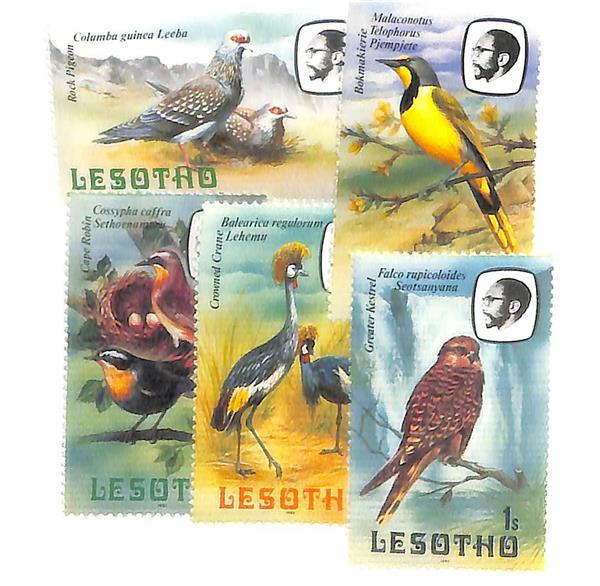 1981 Lesotho