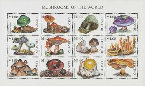 1998 Lesotho 1114 Mushrooms, 12v