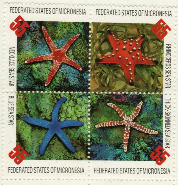 1996 Micronesia
