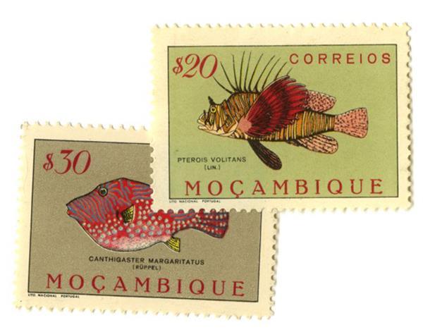 1951 Mozambique