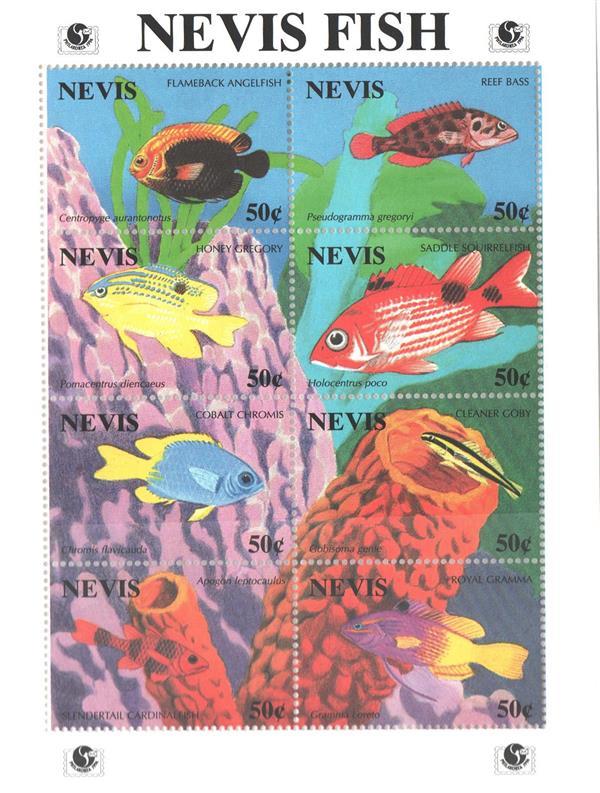 1994 Nevis