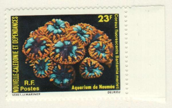 1979 New Caledonia
