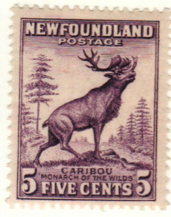 1932 Newfoundland