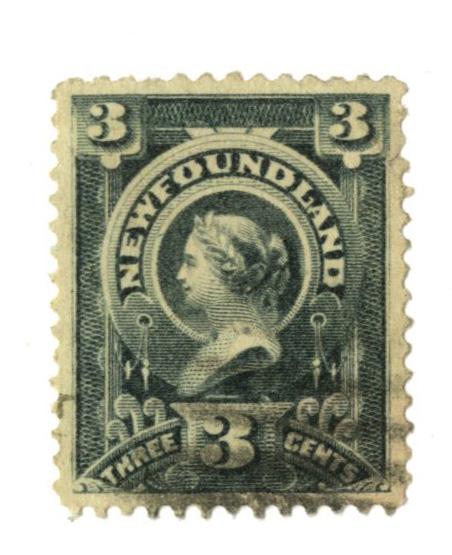 1890 Newfoundland