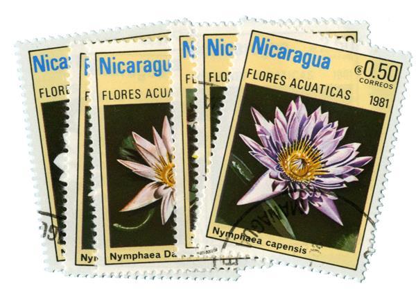 1981 Nicaragua