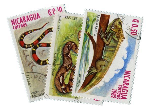 1982 Nicaragua